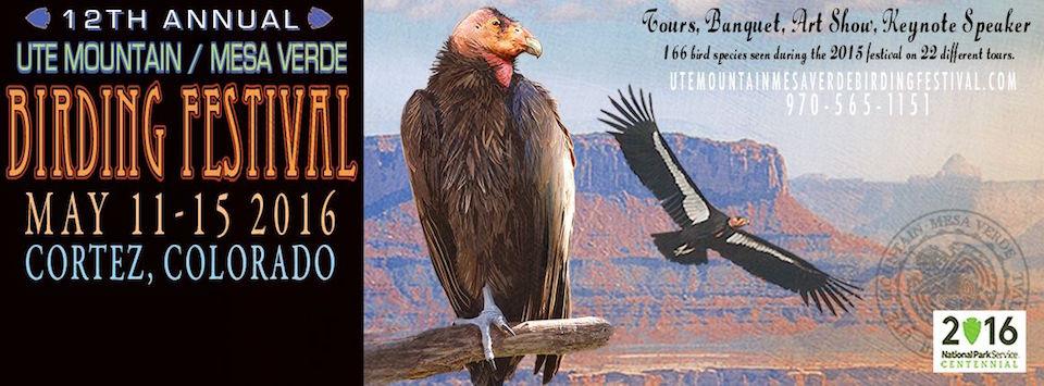 2016 Ute Mountain / Mesa Verde Birding Festival Banner Art